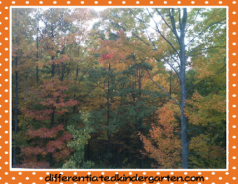 Planning Autumn Math Stations