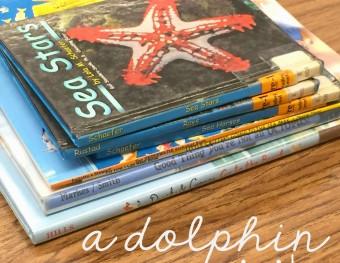 A Dolphin Visits Kindergarten