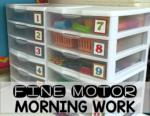 Fine Motor Morning Work Bins