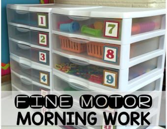 Fine Motor Morning Work Bins