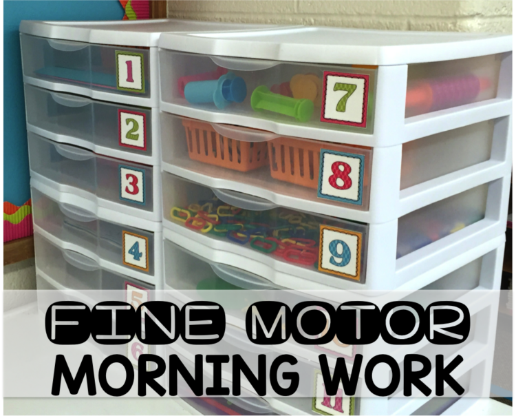 Fine Motor Morning Work Set Up and Implementation
