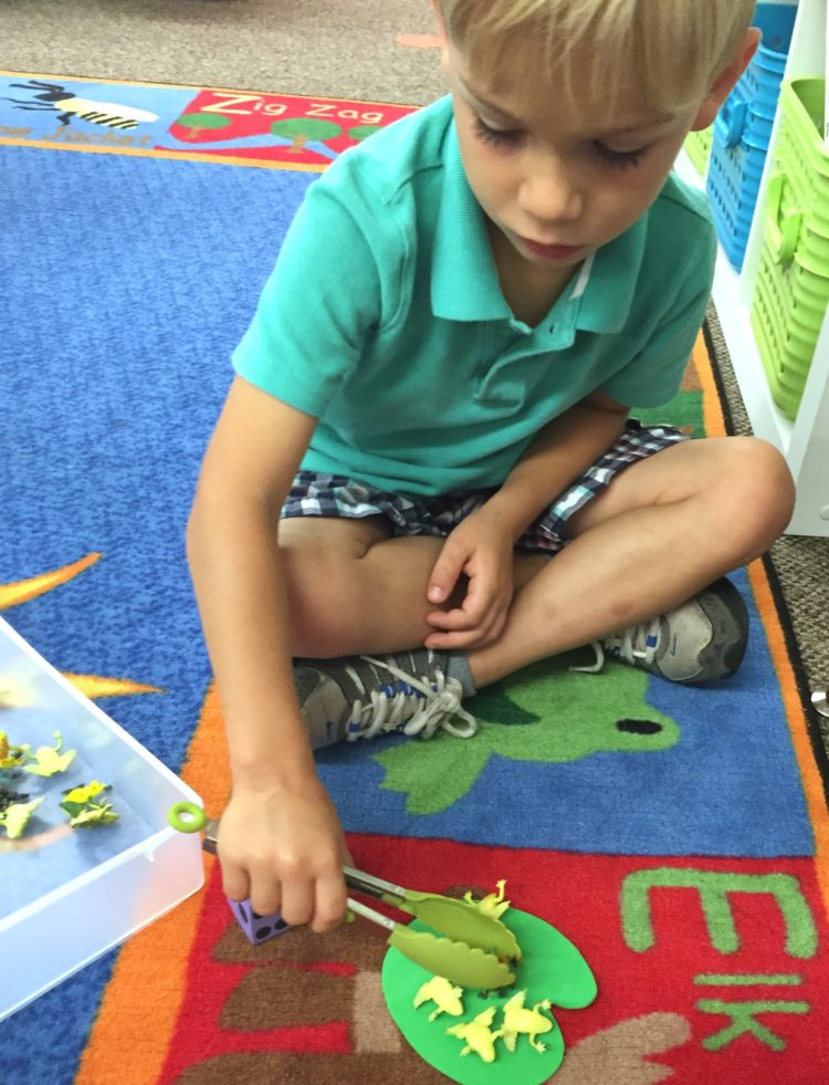 Fine Motor Work Stations In Action in Kindergarten-Tongs and Manipulatives