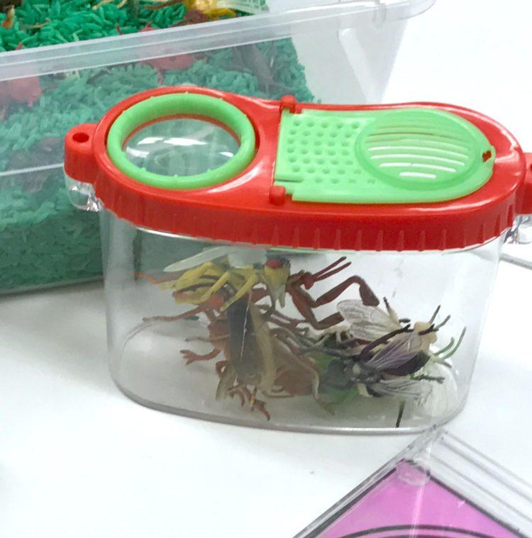 Kindergarten Fine Motor Math - Bugs